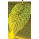 nectar leaf cbd logo