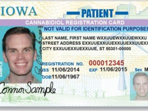 This is a mock-up of the card the Iowa Department of Transportation will issue to those who can obtain cannabidiol in the state (Photo: Iowa Department of Transportation)